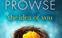 Review   The Idea of You by Amanda Prowse