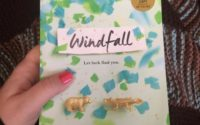 Review   Windfall by Jennifer E. Smith