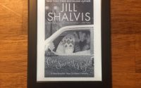 One Snowy Night by Jill Shalvis | Review